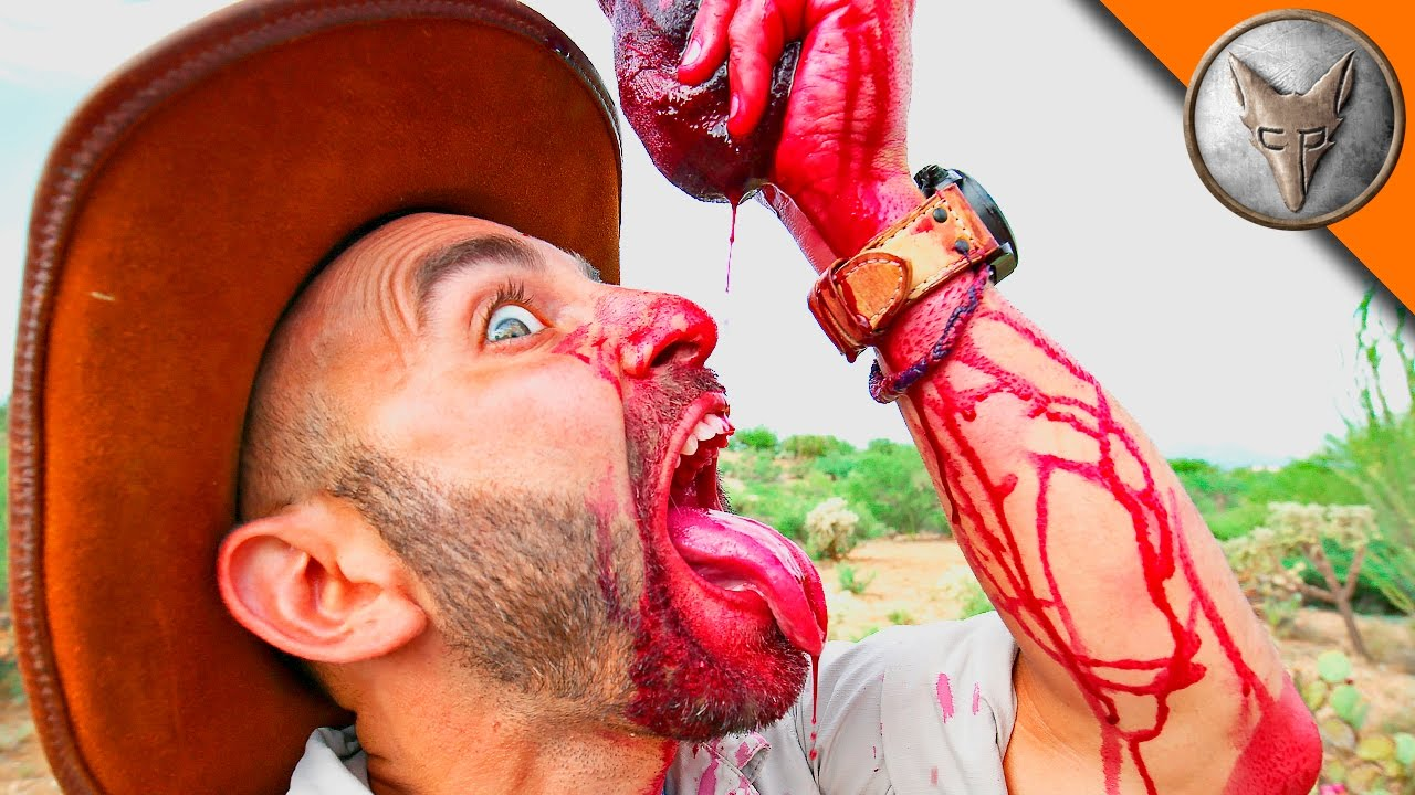 coyote peterson feasts upon the juice of a prickly pear