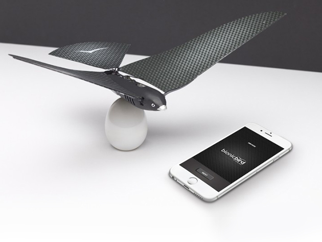 Bionic Bird and Phone