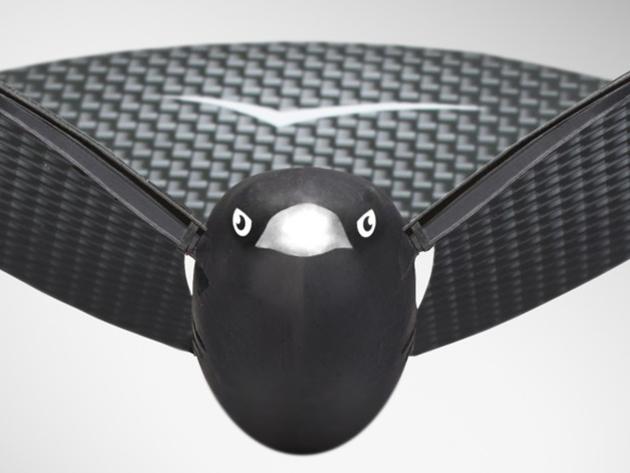 Bionic Bird Face