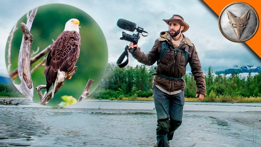 Coyote Peterson Crosses Land and Water to Capture the Perfect Photo of an Elusive Bald Eagle in Alaska
