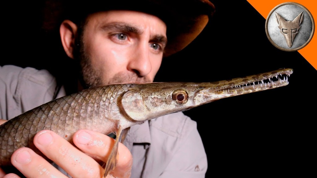 Coyote Peterson Searches For the Most Unusual Creatures of South Texas Under the Cover of Night