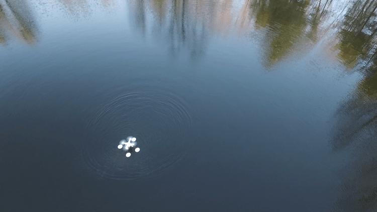 WaterStrider on Lake