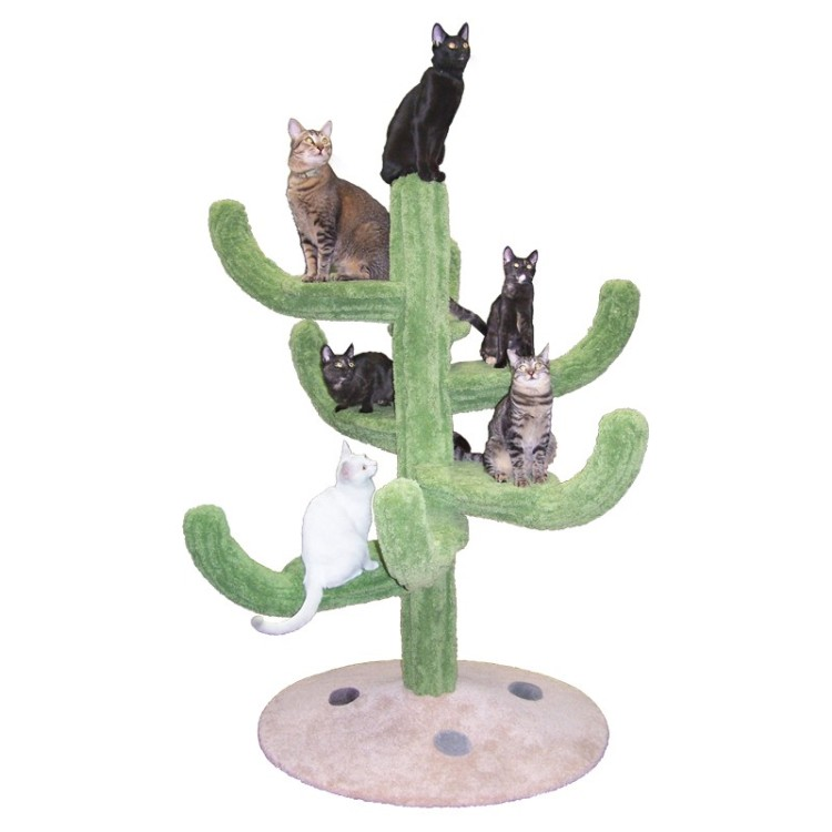 Cozy Cactus Tree A Plush Customizable Desert Oasis For