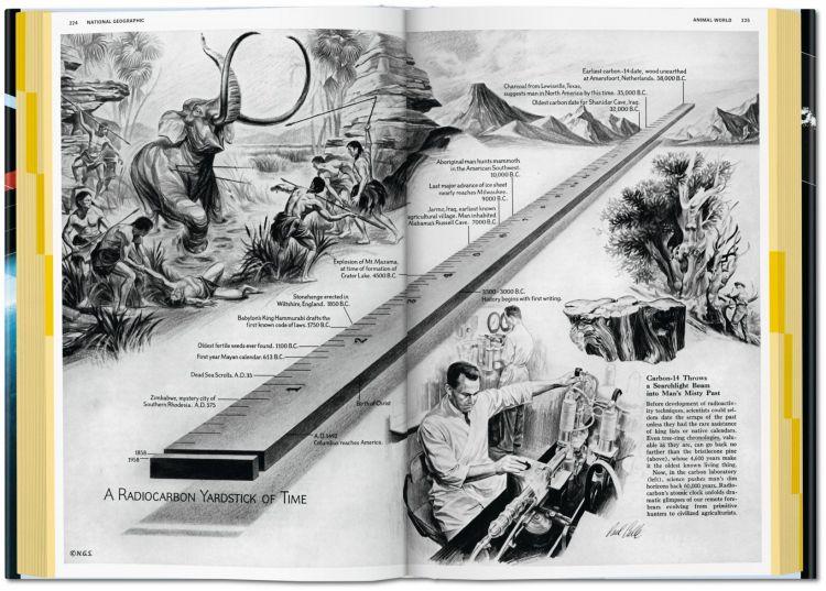 Elephant Ruler
