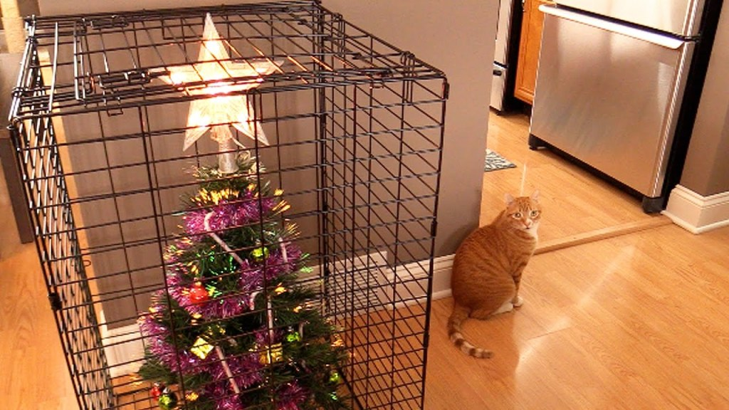 How To Protect a Christmas Tree From Curious Cats