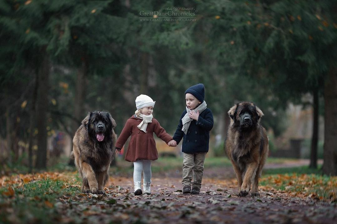 A Truly Heartwarming Photos Series That Captures the Loving Bond Between Little Kids and Big Dogs