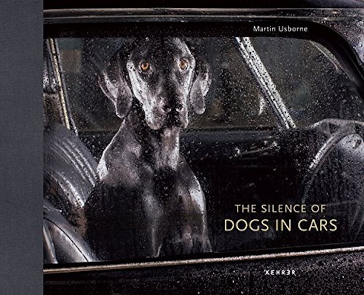 silence-of-dogs-in-cars