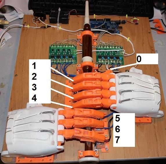 Ardu McDuino Fingers Numbered