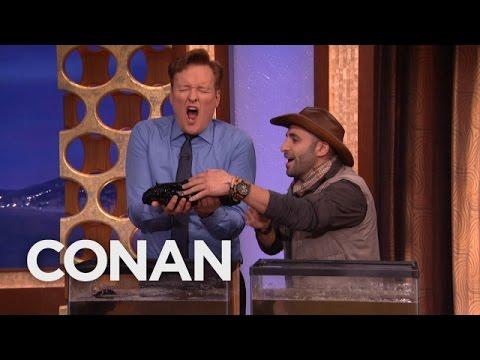 Coyote Peterson on Conan