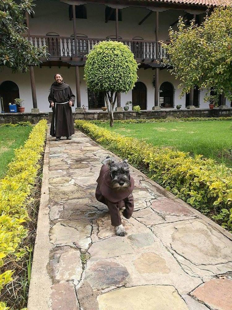 Friar Bigotón