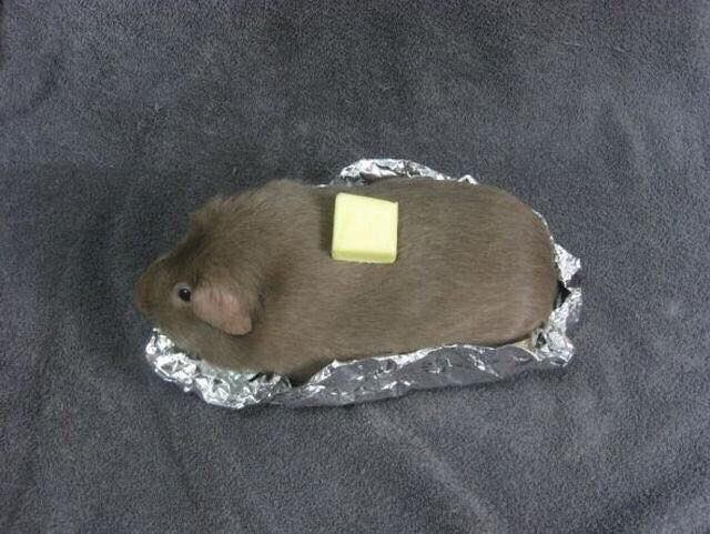 Baked Potato Cosplay