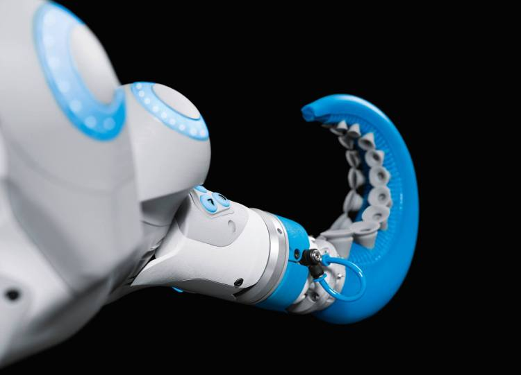 An Incredible Gripping Bionic Robot Arm Directly Inspired