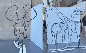 Anamorphic Wire Sculptures