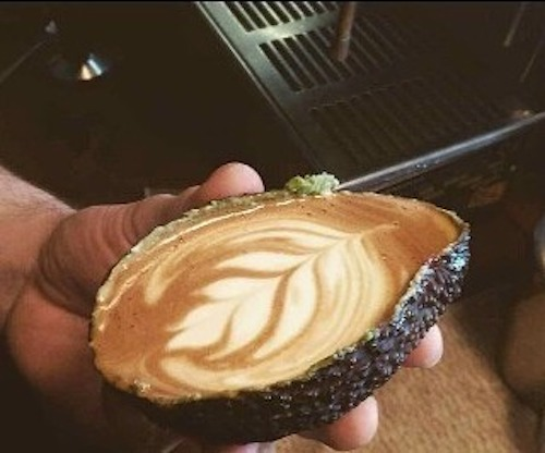 Avolatte, Hot Latte Drinks Made in Environmentally Friendly Hollowed Out Avocado Shells