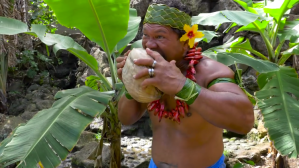 Kap Husking Coconut With Teeth