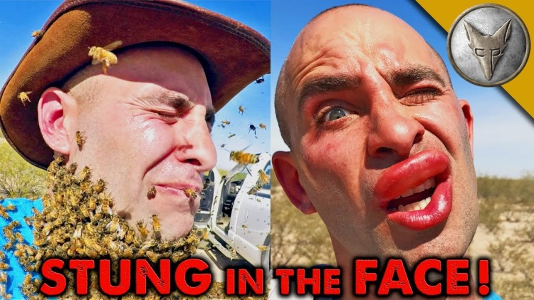 Swarm of 3000 Angry Bees Sting Coyote Peterson's Face During His Failed Attempt at a Bee Beard