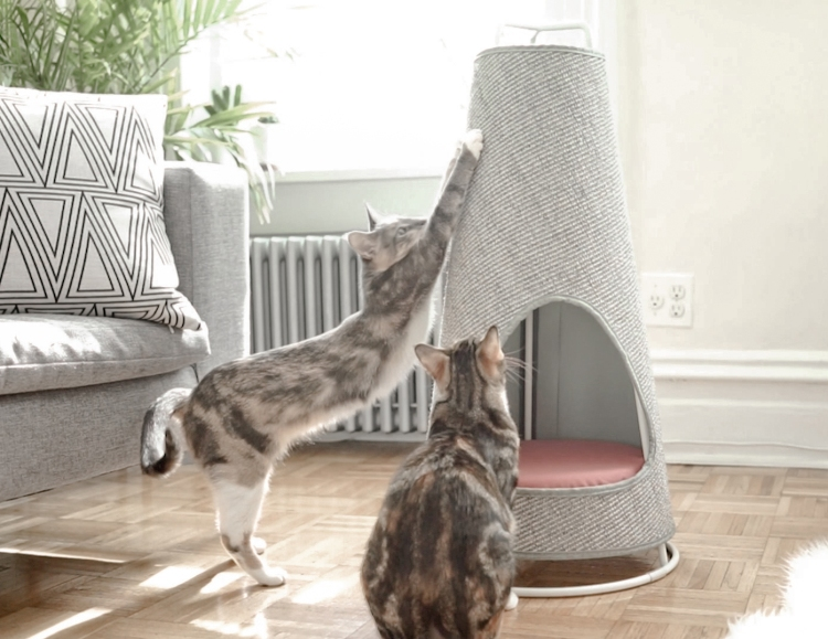 The Cone A Sleek Modern Cat Scratching Post That Doubles