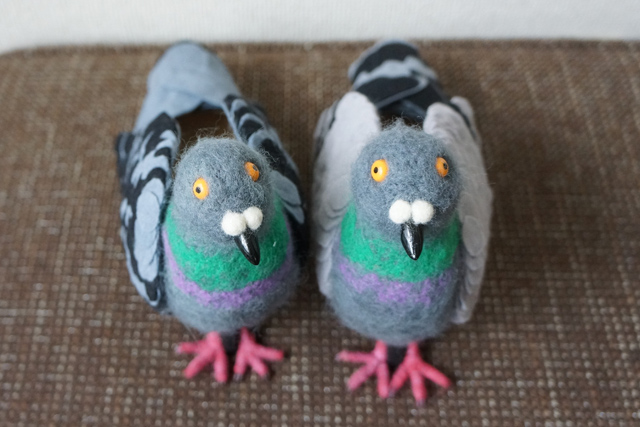 Pigeon Shoes