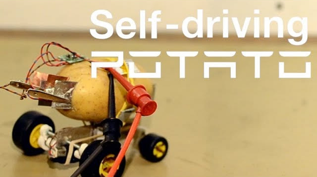 An Electric Self Driving Potato That Is as Lovable as an Actual House Pet