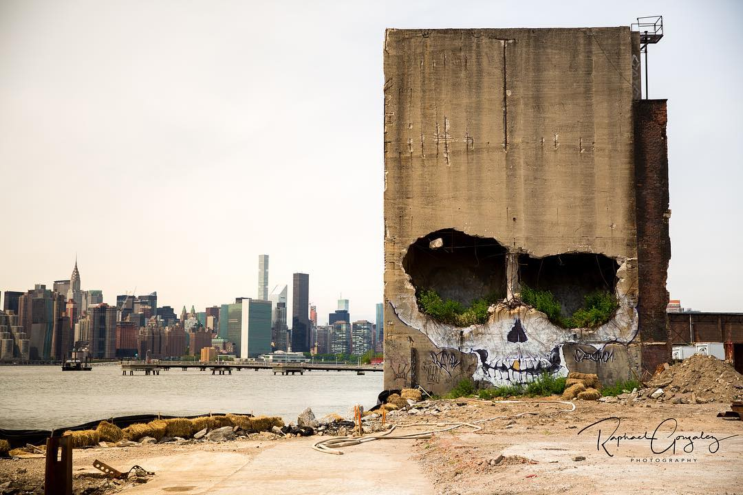 Street Artist Transforms the Disrepair of a Crumbling Brooklyn Building Into a Magnificent Skull Mural