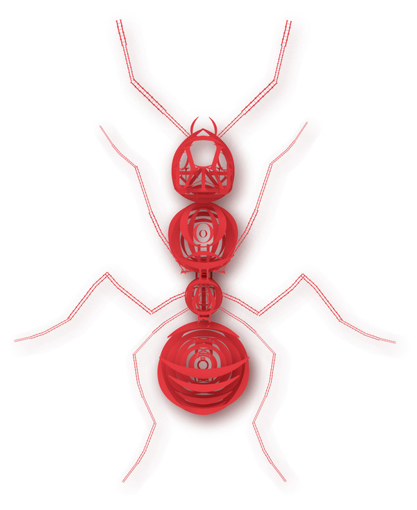 Typographic Insects Ant