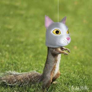 Cat-Head-Squirrel-Feeder