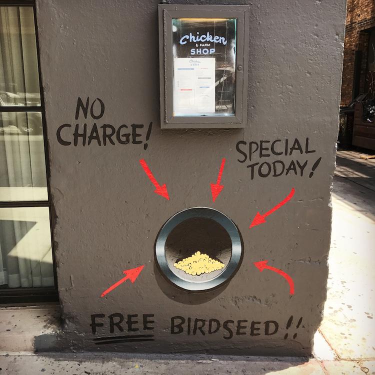 Free Bird Seed