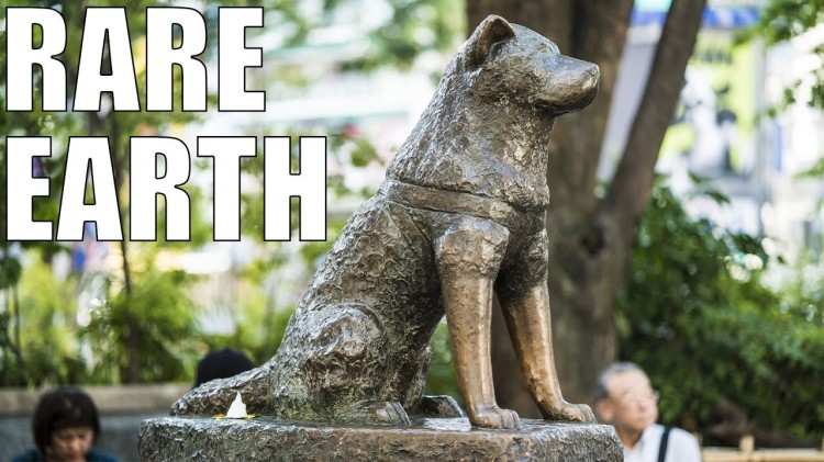 How a Loyal Akita Named Hachiko Became the Most Famous Dog in the World