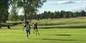 Moose Golf Course Sweden