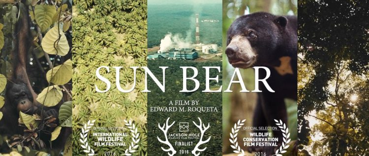 Sun Bear, A Gorgeous Short Film That Gives a First Person Voice to an Endangered Sun Bear in Borneo