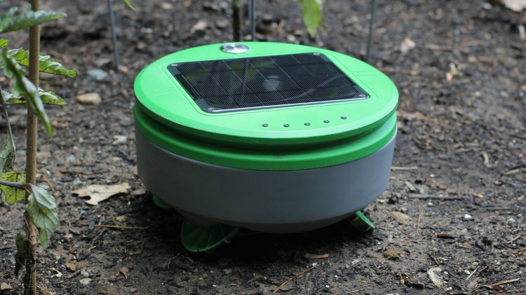 Tertill, A Solar Powered Roomba-Like Robot That Automatically Removes Weeds From Gardens