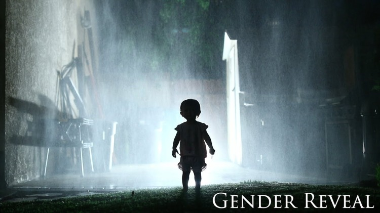 The Sequel: Gender Reveal, A Horror Movie Trailer Announcing a Husband and Wife's Second Child