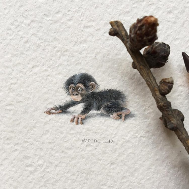 Exquisitely Detailed Watercolor and Pencil Illustrations of the Animal World in Miniature