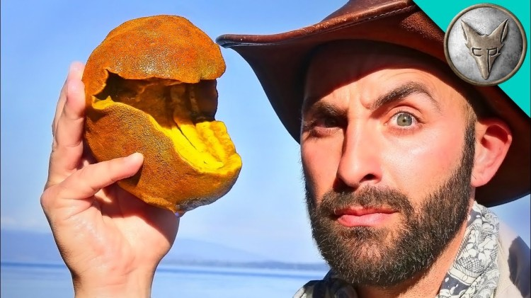 Coyote Peterson Finds an Odd Pac-Man Looking Creature Along the Coast of a Salish Sea Island
