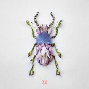 Floral Stag Beetle