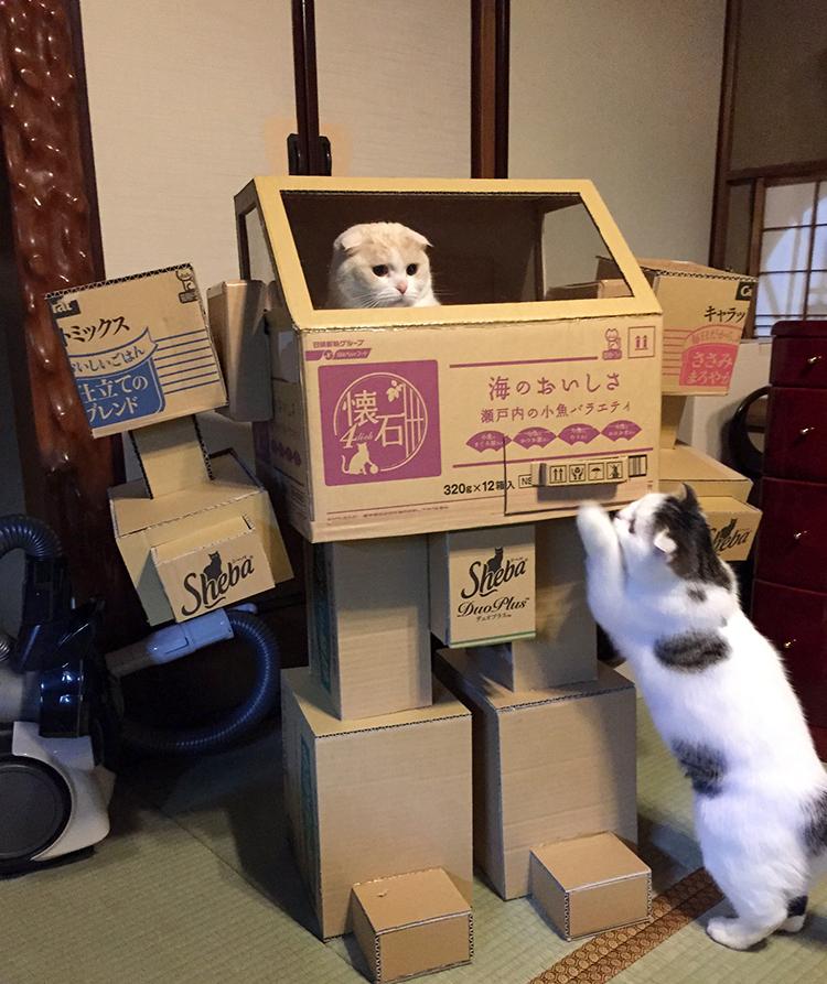 Robot Cat Playhouse