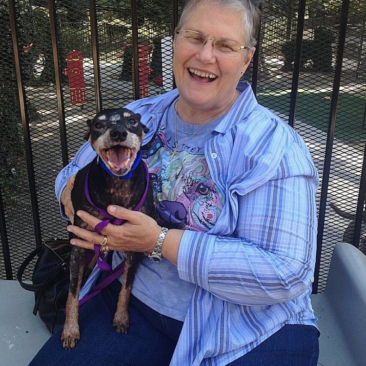 A Kind Woman Asks For the Most Un-Adoptable Shelter Dog to Give Him a Loving Home