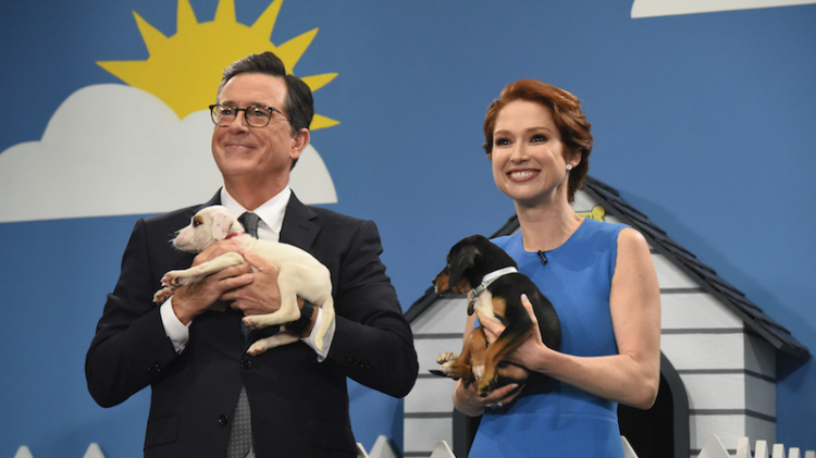 Ellie Kemper and Stephen Colbert Tell Flattering Lies About Cute Rescue Dogs to Help Them Find Homes