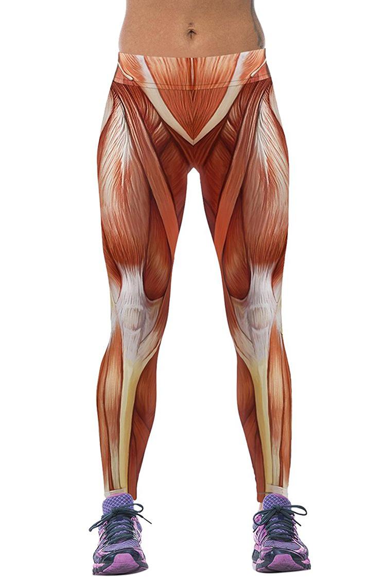 Anatomically Correct Muscle Leggings