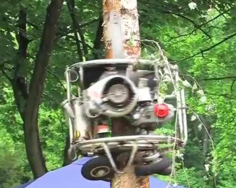An Automated Spiraling Chainsaw Machine That Climbs Trees and Trims All Branches In Its Path