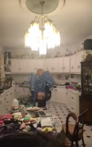Bat Chase in the Kitchen