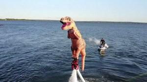 Flyboarding T-Rex