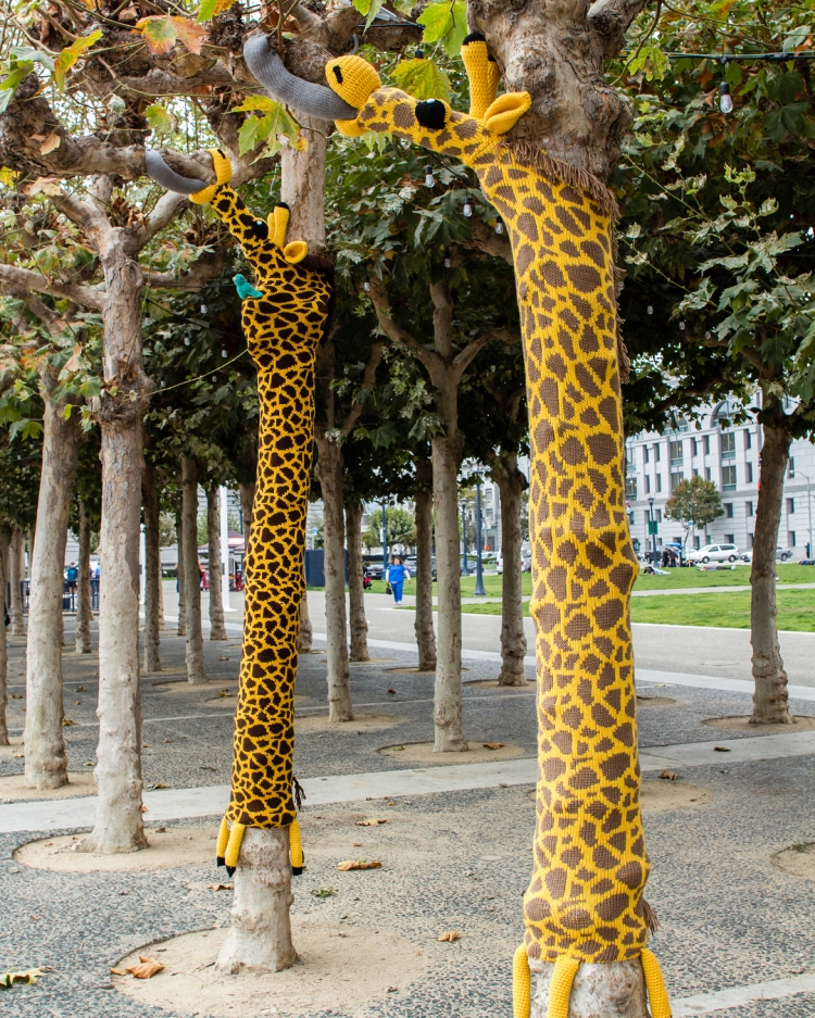 Three Trees In Front of San Francisco City Hall Have Been Yarn Bombed With Adorable Giraffes