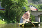 Shark Rowboat Train