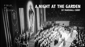 a-shocking-film-about-the-night