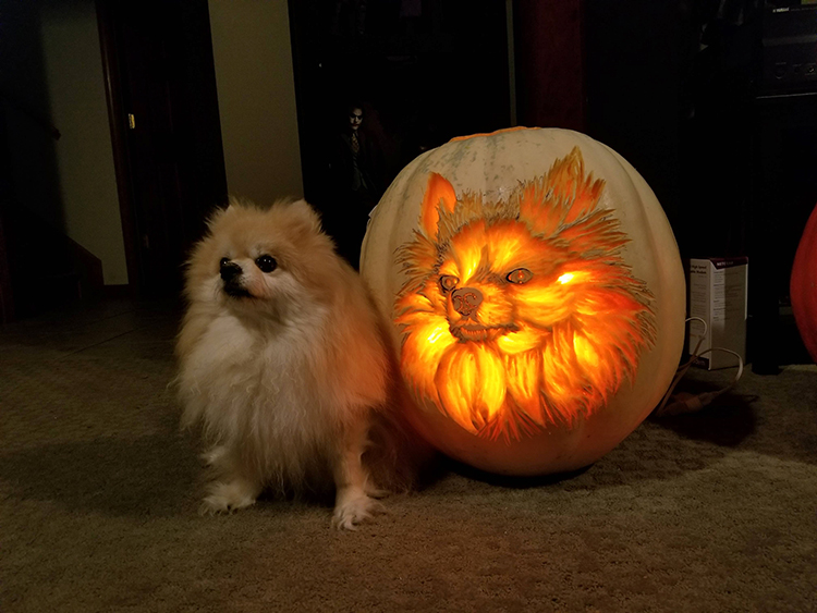 Veterinarian Creates a Realistic Dog Pumpkin Carving of His Pomeranian, Sophie