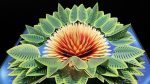 PopUp Flower