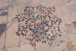 217 Incredible Skydivers Set World Record for a Formation Skydive