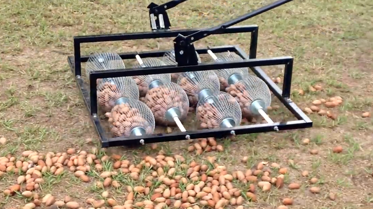 A Ingenious Nut Gathering Device That Can Easily Clean Up a Large Pile of  Pecans From a Yard
