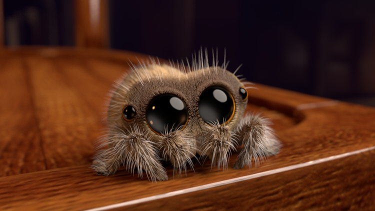 Image result for cute spider